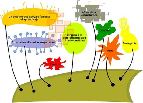 ecologia del aprendizaje